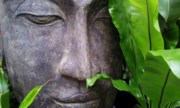 Tout ou presque sur la philosophie du yoga : étape 1
