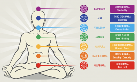Tout sur les chakras ou presque, circuit énergétique du prana