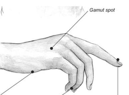 respiration claviculaire-point de gamme-gamut spot