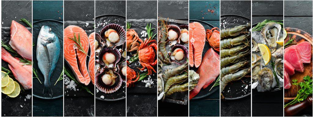 Alimentation physiologique-poissons et fruits de mer