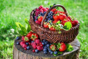 Comment mieux manger pour votre santé - fruits-panier
