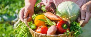 pâté végétal graines de courge-légumes
