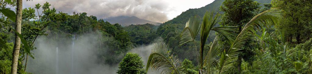 gado-gado-Indonésie-