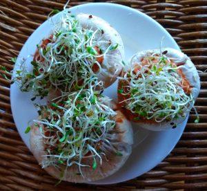Muhammara- champignons-graines germées