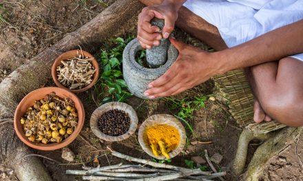 Yoga et alimentation : doit-on manger selon les principes de l'Ayurveda ?