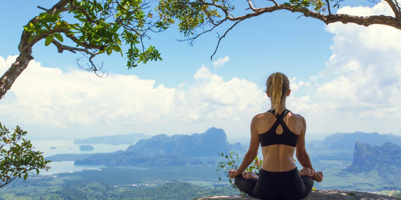 Yoga et corona virus :  renforcer son immunité 2. Pratique holistique
